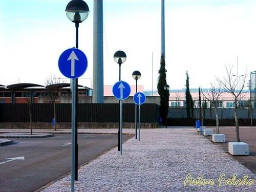 estádio municipal.jpg