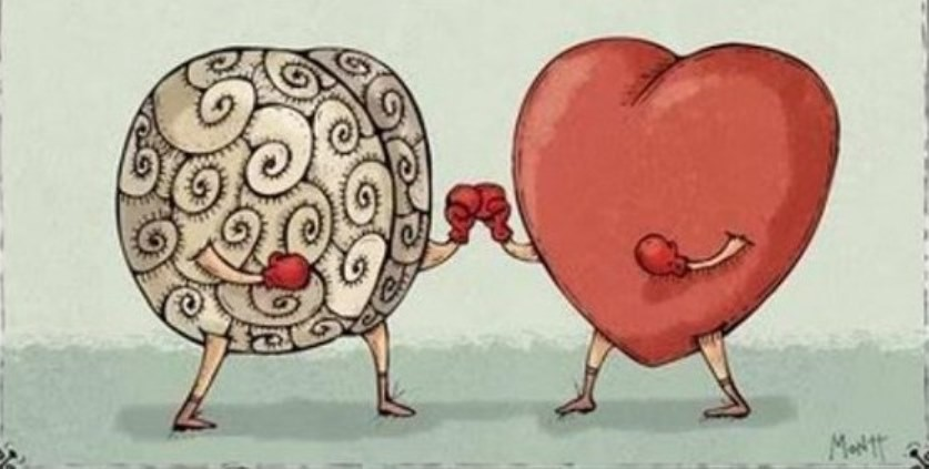 brain-vs-heart.jpg