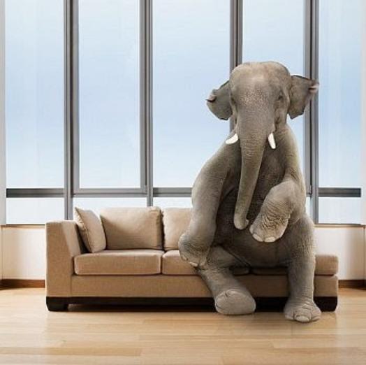 ElefanteNaSala.png