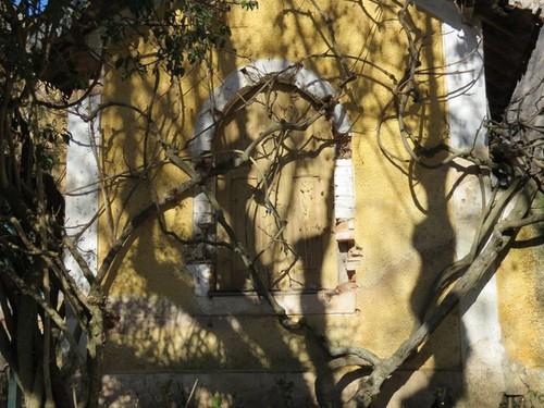 jardim castelo 4.jpg