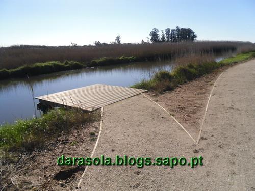 SAM_5430.JPG