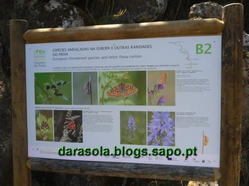 Passadicos_paiva_069.JPG