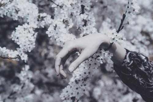 © Anna O. 03.jpg