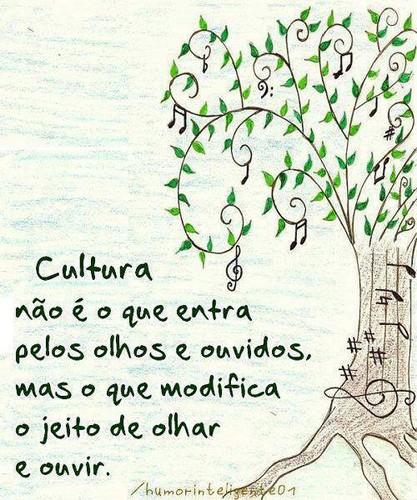 Cultura não é o que entra pelos olhos e ouvidos, mas o que modifica
