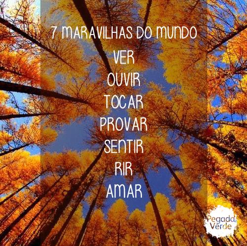 maravilhas2.png