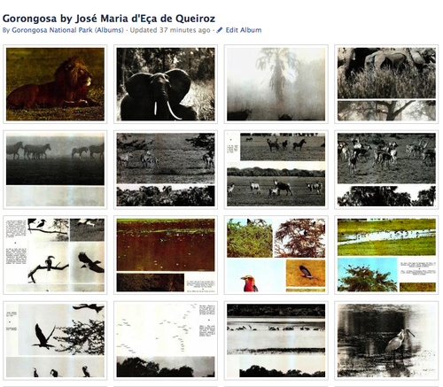 FB_Gorongosa_Eca de Queiroz.jpg
