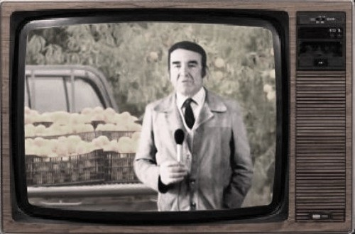 Sousa Veloso - TV Rural.jpg