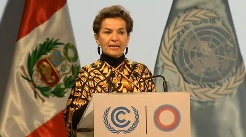 COP20_SAN03.jpg