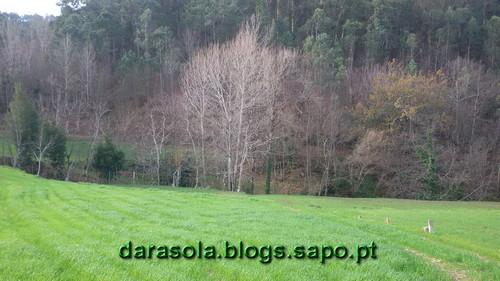 Burgo_07.jpg