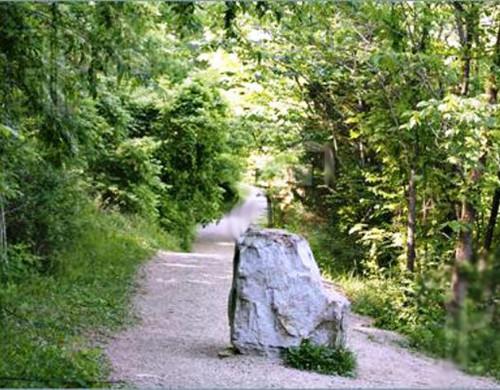 pedra no caminho 17_11_11.jpg