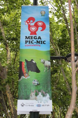 IMG_0727 Mega Pic-nic 2014