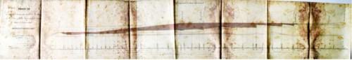 p. 238.jpg