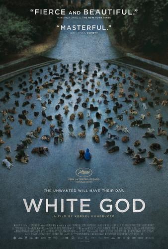 white-god-poster.jpg