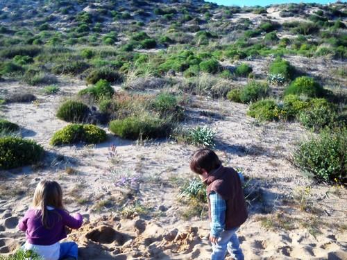 As dunas são um mundo de cores e cheiros que os pequenotes adoram explorar.