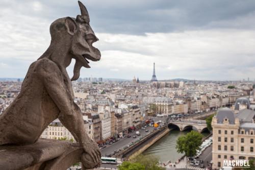 Diablo-vigilando-París-Quimeras-o-Gárgolas-de-No