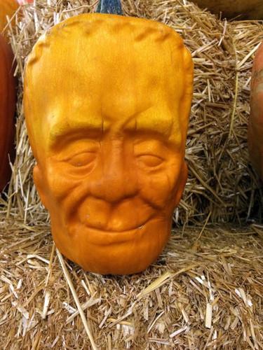 POTD_Pumpkin_head_3071655k.jpg