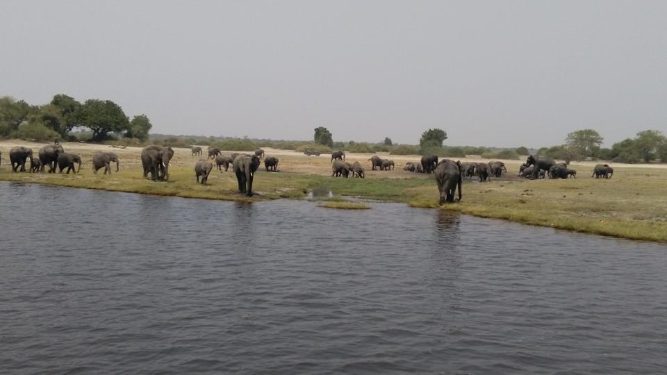 Botswana 295.jpg