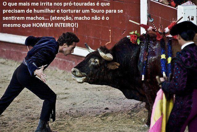 Toureiro vs touro.jpeg