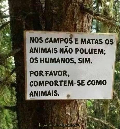 animais.jpg
