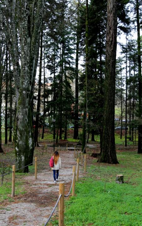 Passeio no Parque - Guarda - Foto Helder Sequeira.
