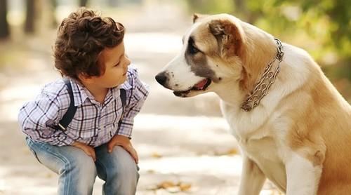 Criança e Cão ..jpg