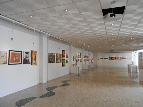 Exposição da USALMA (2). 2015. Foto de João Flávios. PNG