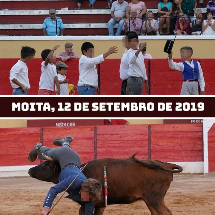 MOITA.jpg