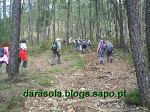 Arriba_Fossil_Esposende_04.JPG