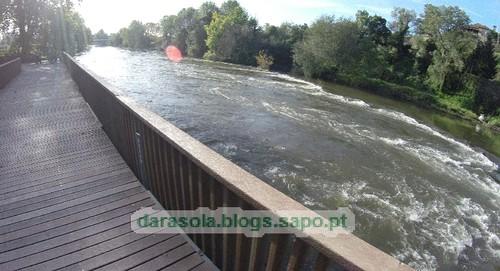 Margens rio Ave Trofa 01.JPG