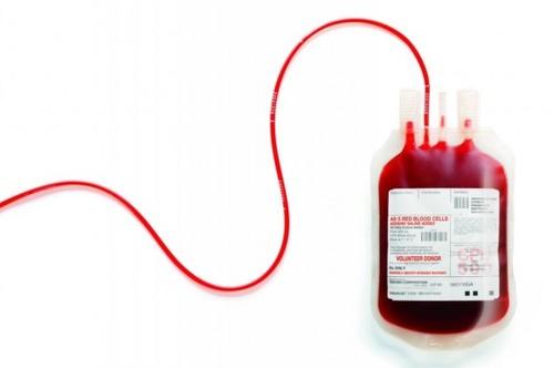 doação de sangue gay.jpg
