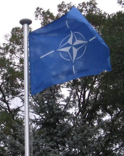 Bandeira Nato hast