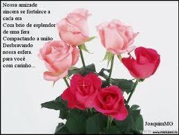 flores nossa amizade.jpg
