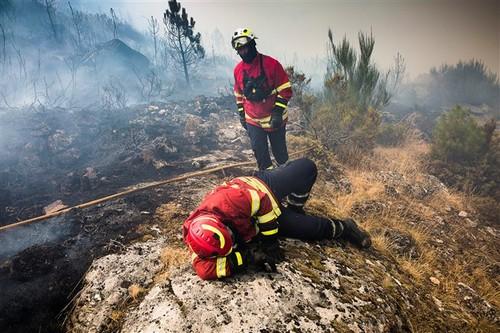 bombeiros cansados.jpg