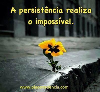 persistência.jpg