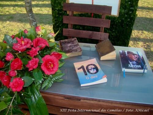 5 - XIII Festa Internacional das Camélias - Celor