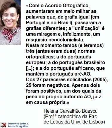 Helena Buescu.jpg