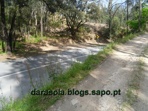 Rota_do_Gaia_48.JPG