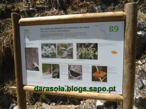 Passadicos_paiva_003.JPG
