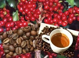 Café - In. jornalgospelnews.com.br. .jpg