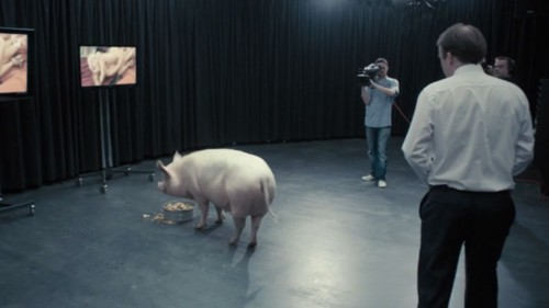 pm-and-pig.jpg