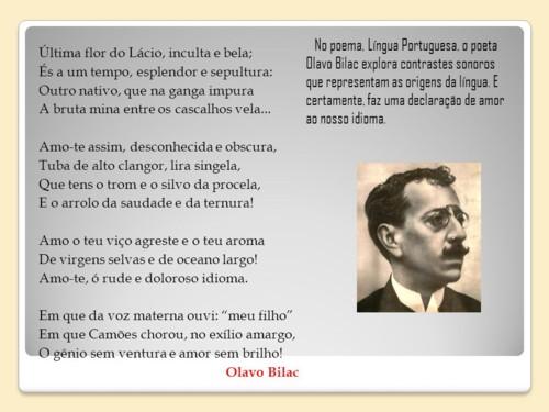 FLOR DO LÁCIO.jpg
