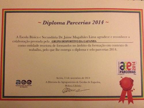 diploma parceiro 2014.JPG