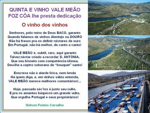 Quinta e vinho do Vale Meão.jpg