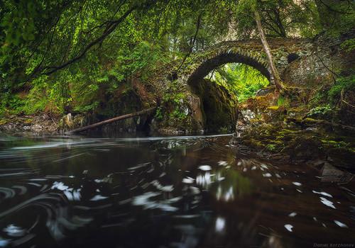 ponte-16_original.jpg