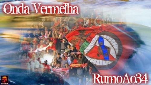 RumoAo34_1.jpg