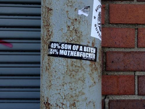 51-Percent-nys.jpg