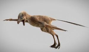Ambopteryx-longibrachium.jpg