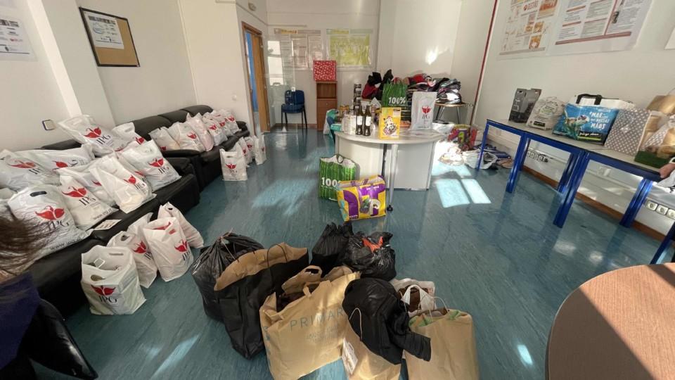 Funcionários do IPG recolheram alimentos.jpg