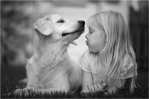 Amizade-Verdadeira.jpg