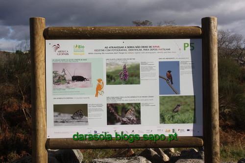 Biodiversidade_Freita_15.JPG